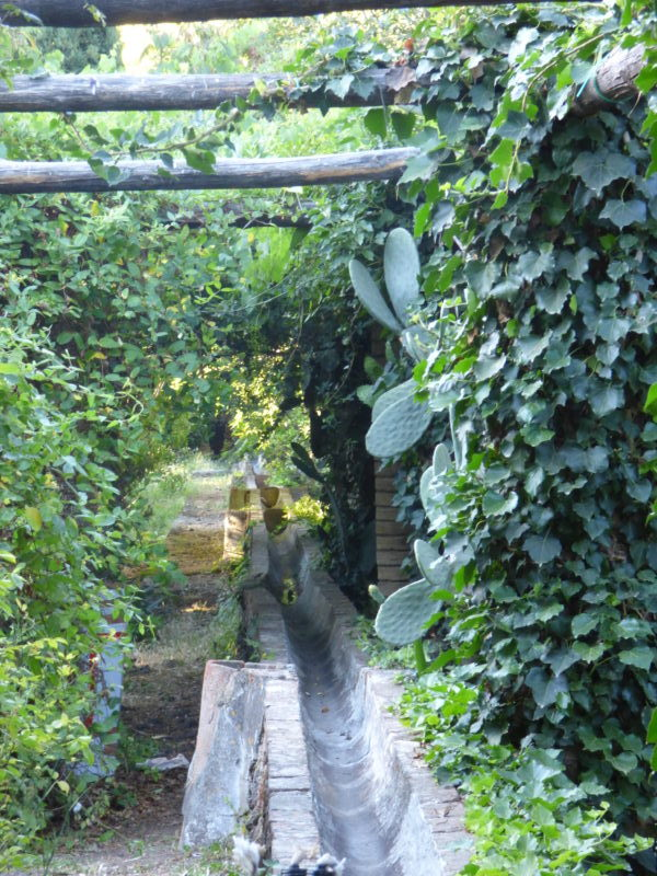 Cover Giardino di Villa Trinità – Etna Botanic Garden