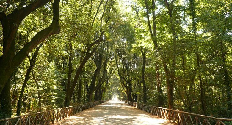 Cover Parco di Capodimonte – Museo e Real Bosco di Capodimonte