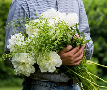 Cover Franco Fontanel Floral Designer