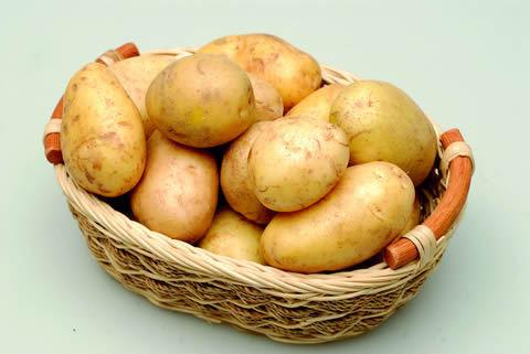 Cover Patata precoce di Chioggia