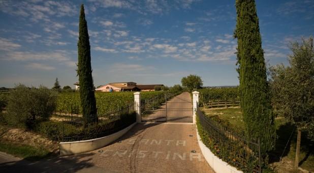 Cover Azienda vitivinicola Zenato