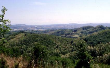Cover Riserva Naturale Speciale Val Sarmassa