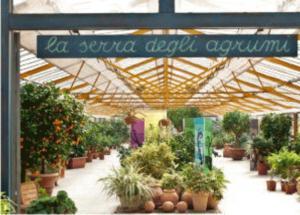 Cover Floricoltura Chiaravalli