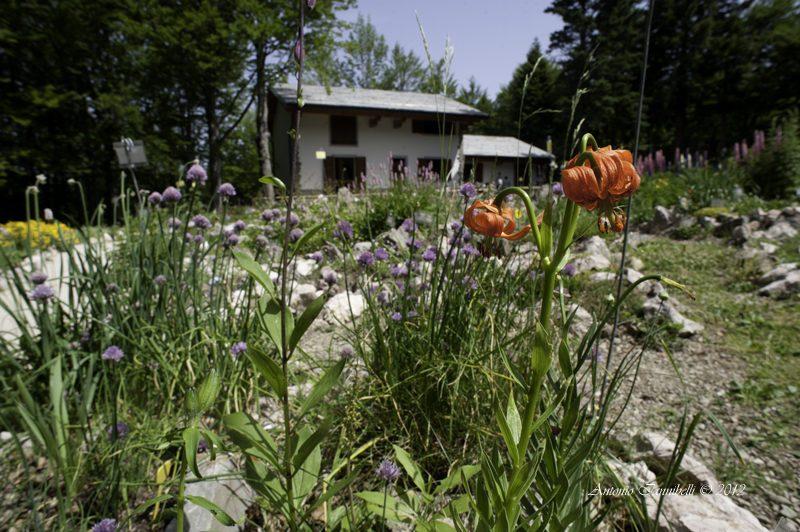 Cover Giardino Botanico Alpino Esperia