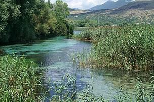 Cover Riserva Naturale Regionale Dighe di Alanno