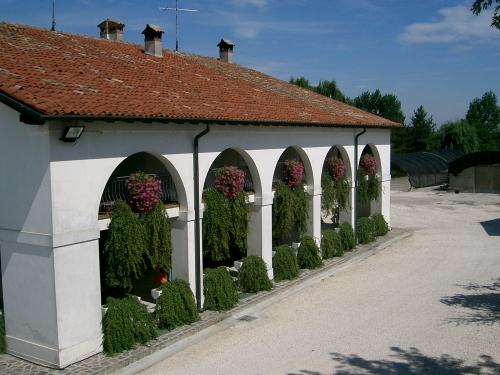 Cover Azienda Agricola La MargheRita