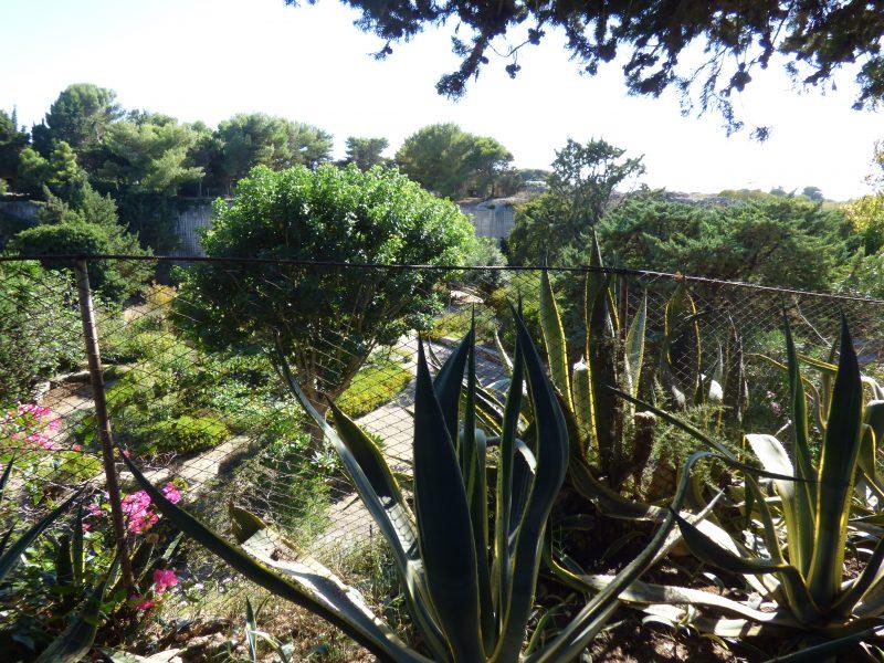 Cover Il Giardino Ipogeo di Villa Margherita/ Il Giardino dell'Impossibile