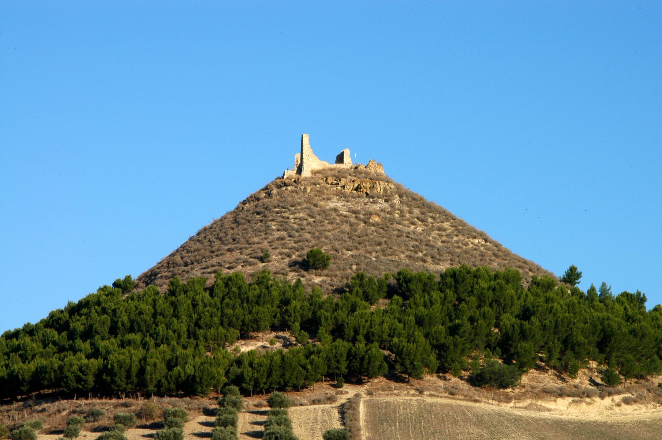 MW_mediaArchive_Image_ec34bb3a7c999e599adfdd07598170b8_Las Plassas - Castello di Marmilla