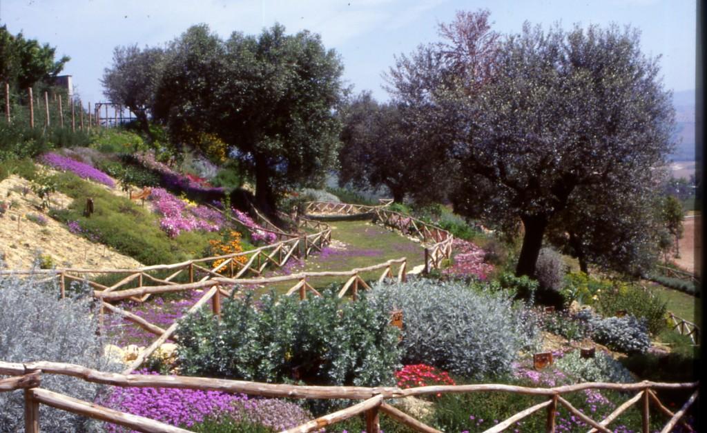 Cover Azienda agricola Giardino Officinale  – Giardino Officinale di Filippo Torzolini