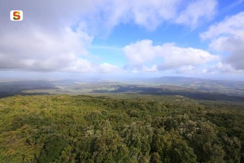 Cover Complesso Forestale di Monte Arci