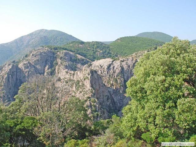 Cover Foresta demaniale di Montimannu