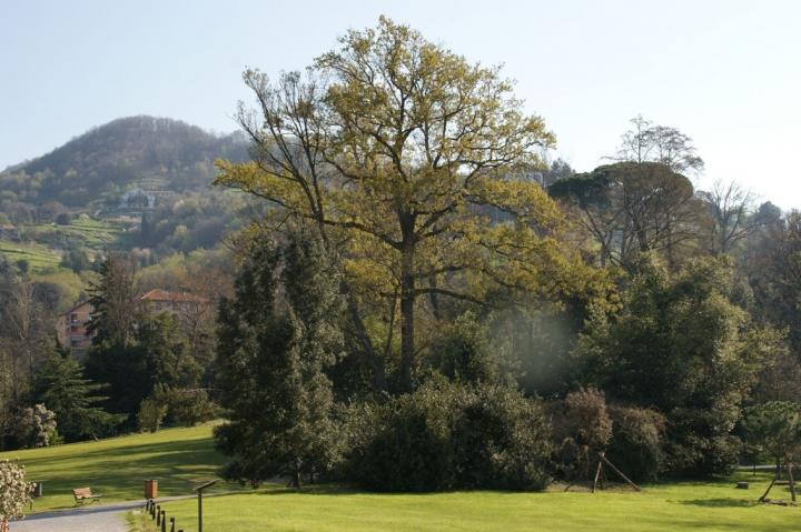 Cover Parco storico di Villa Serra a Còmago