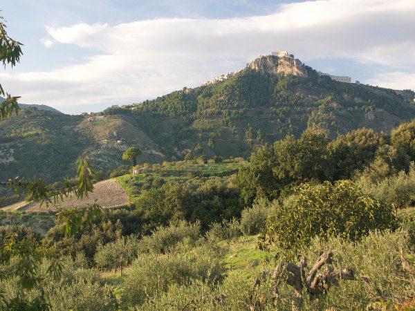 Cover Riserva Naturale Monte S. Calogero