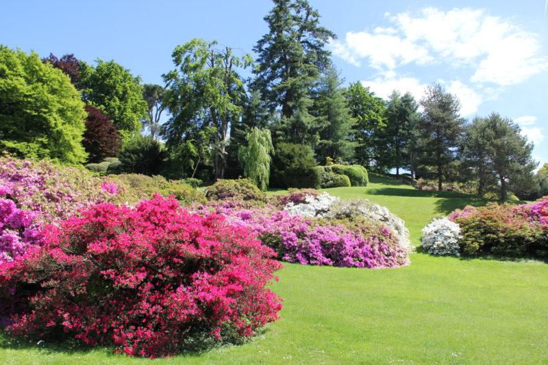 Cover Giardini Villa Melzi d'Eril – Collezione di azalee e rododendri