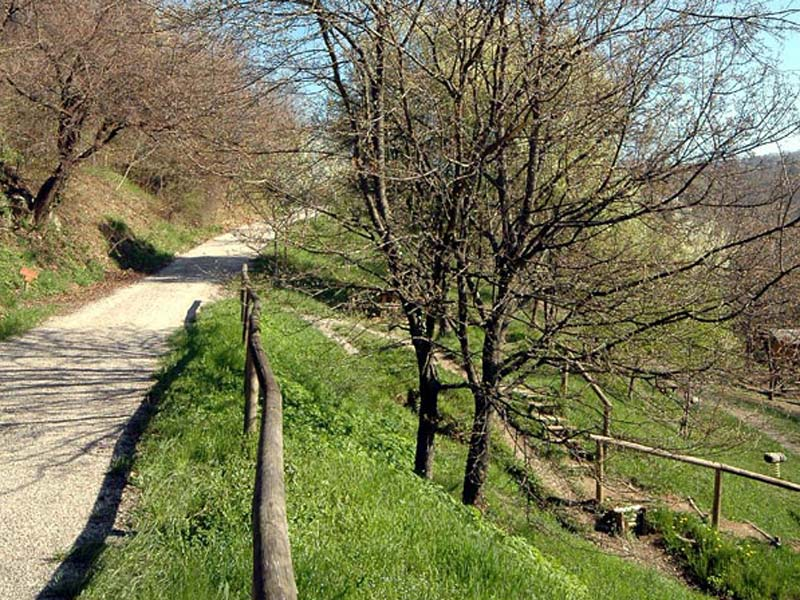 Cover Parco dei Colli di Bergamo