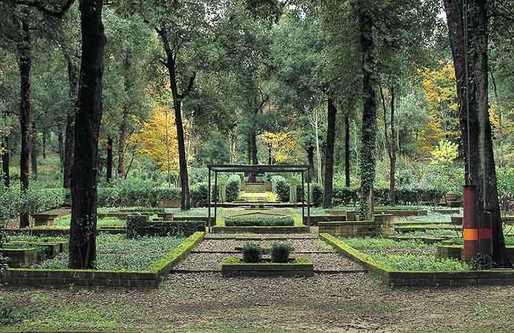 Cover Il Bosco della Ragnaia