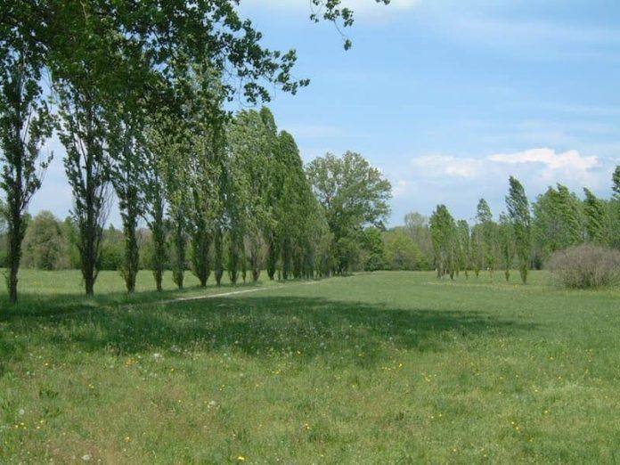 Cover Parco Botanico Friuli Cormor