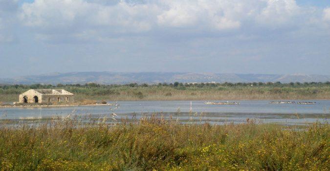 Cover Riserva naturale orientata Pantani della Sicilia Sud-Orientale