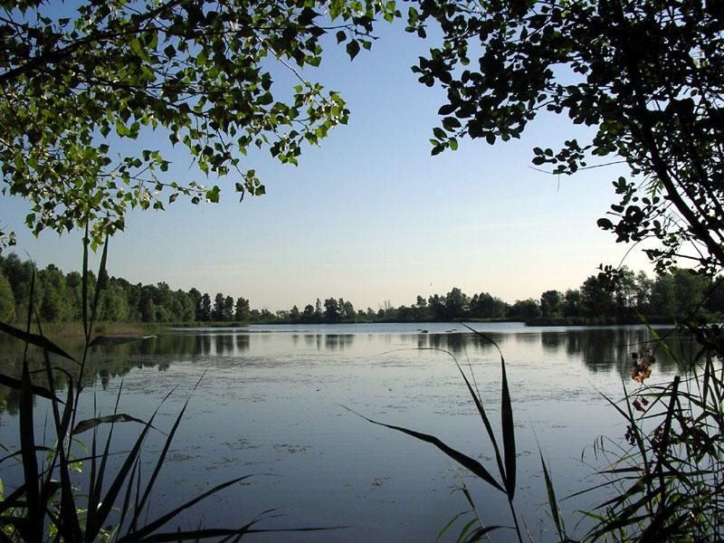 Cover Parco Regionale Fluviale del Taro