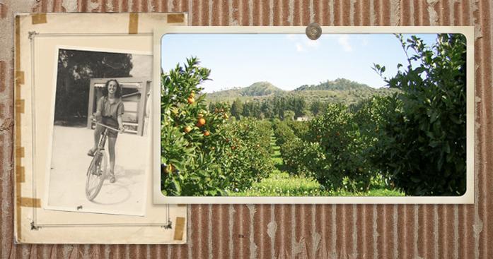 Cover Agricola & Co e Parco Botanico