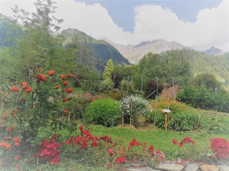 Cover Parco Botanico Alpino dell'Azienda agricola biocertificata Olga Casanova