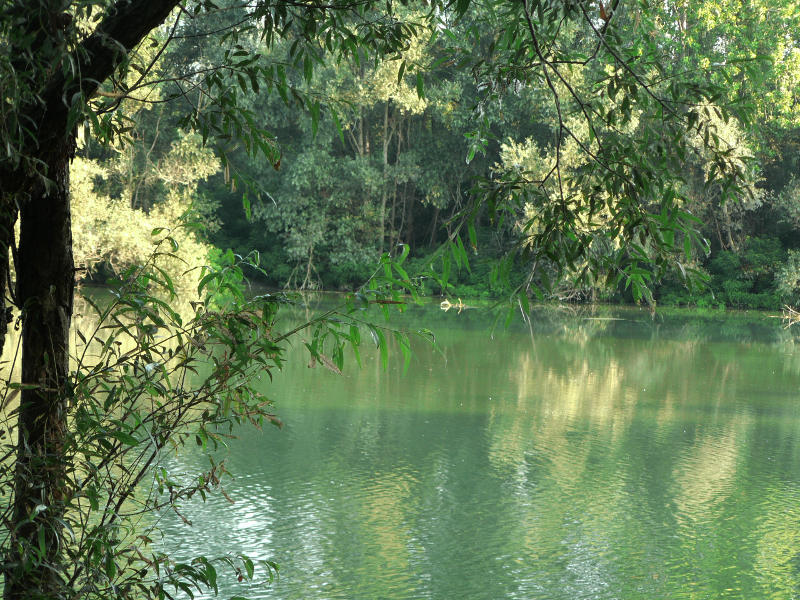 Cover Parco di Isola Girola