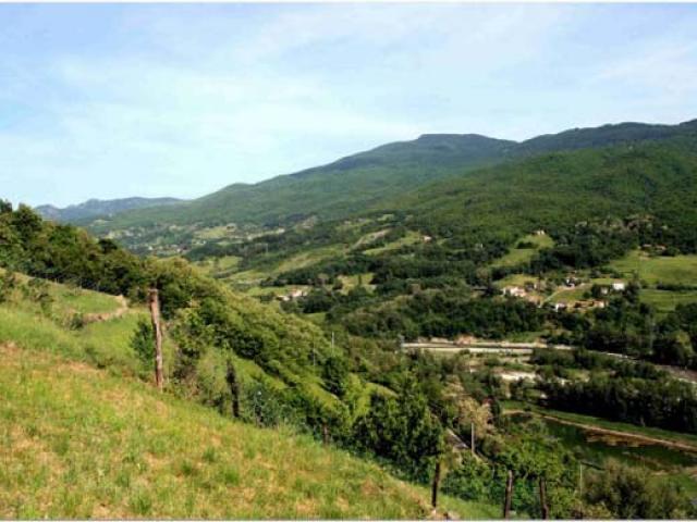Borgo_Val_di_Taro_panorama_della_valle