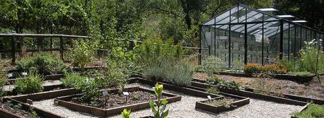 Cover Giardino Botanico delle Sorgenti del Cavuto o Giardino Botanico delle Gole del Sagittario – Oasi del WWF Gole del Sagittario