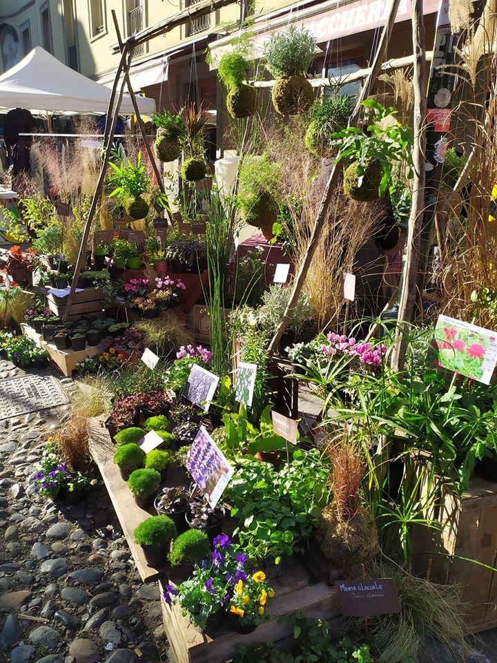 Cover Gardenesque giardini eclettici