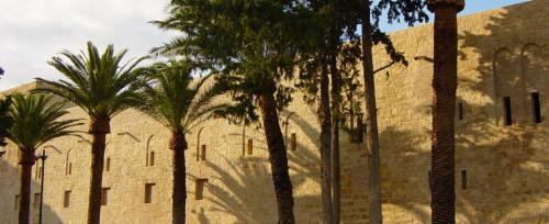 Cover Castello di Maredolce o  Palazzo della Favara e il mandarineto