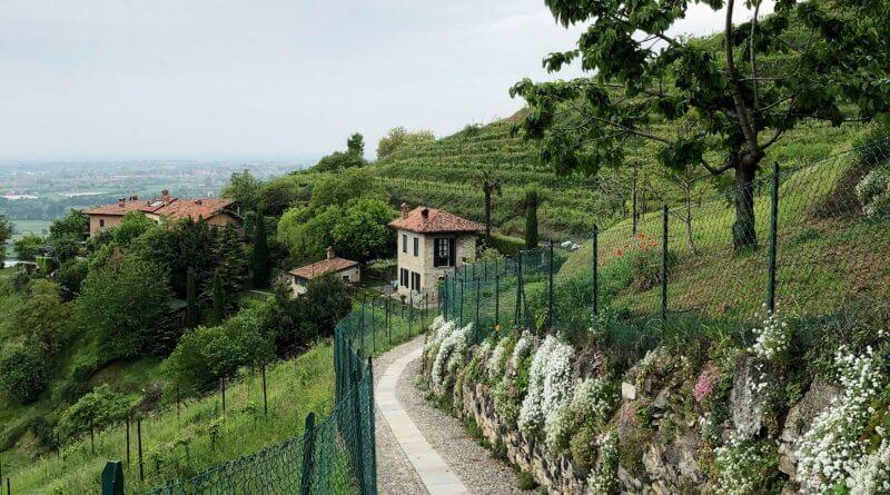 montevecchia-8-800x445