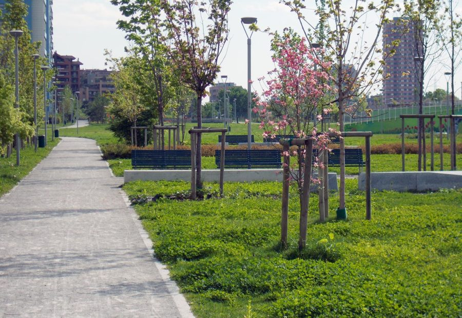 Cover Parco Adriano