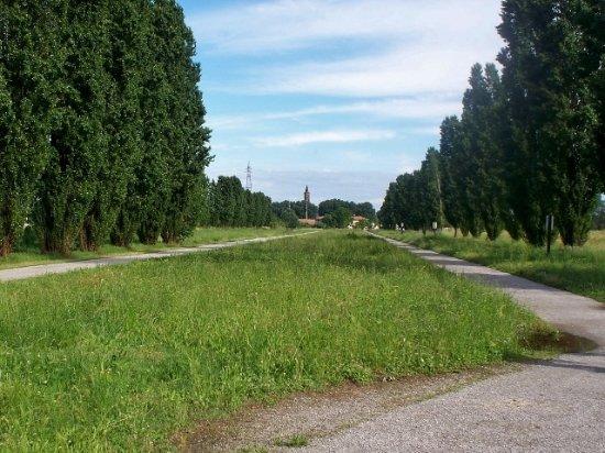 Cover Parco delle memorie industriali e Parco della Vettabbia