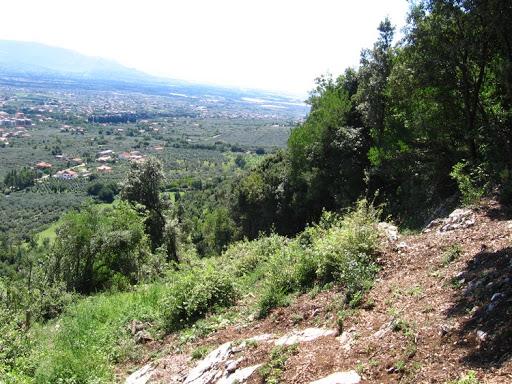 Cover Foresta di Calvello