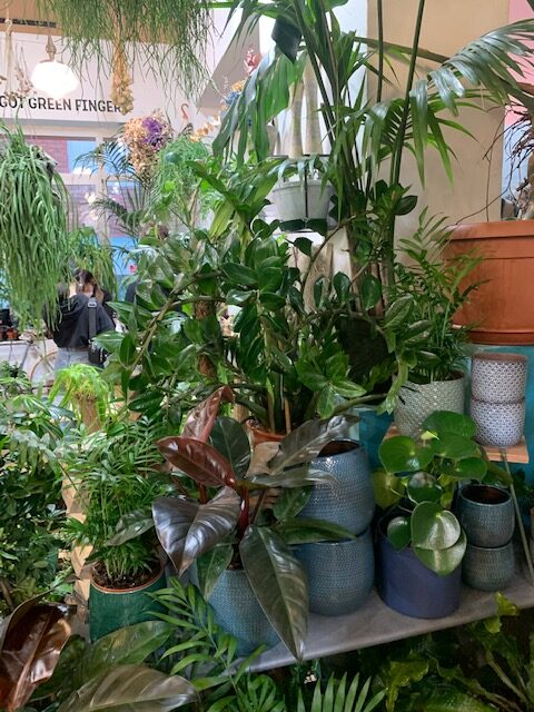 Cover Green Fingers Market Milano
