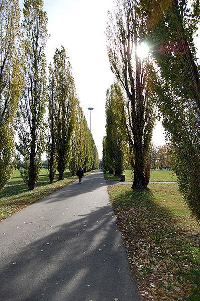 Cover Parco dell'Ippodromo di San Siro
