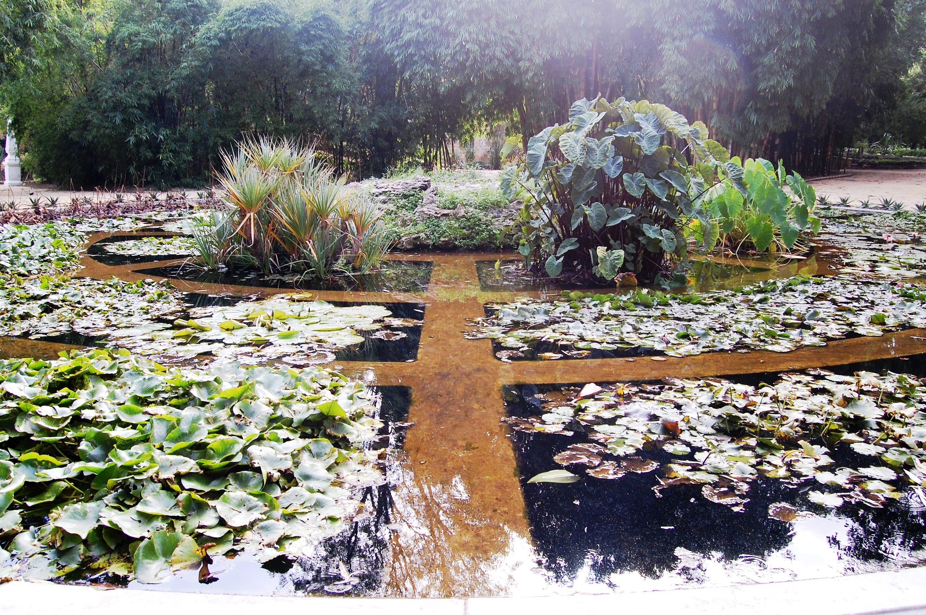 aquarium04-orto-botanico-palermo