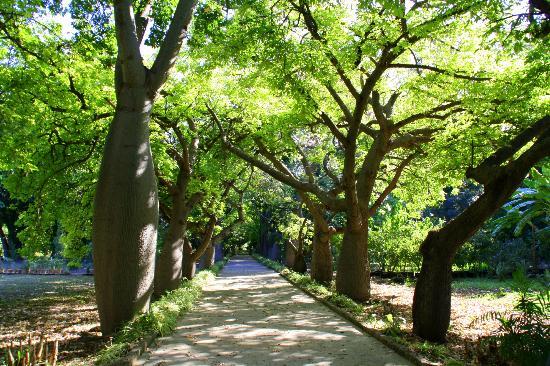 giardino-orto-botanico