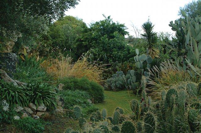 Cover Giardino Botanico Lama degli Ulivi