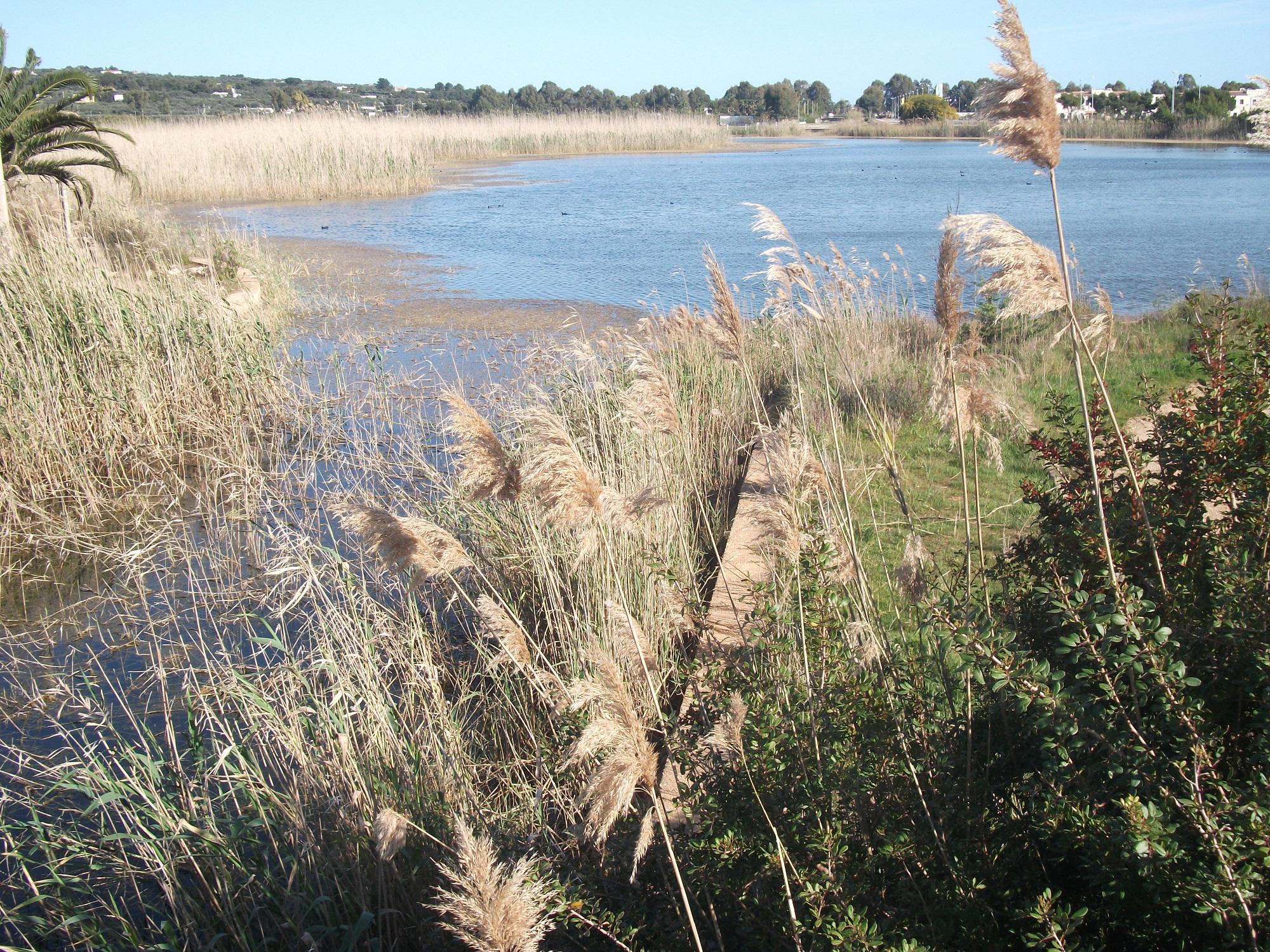 Cover Parco Naturale Litorale di Ugento