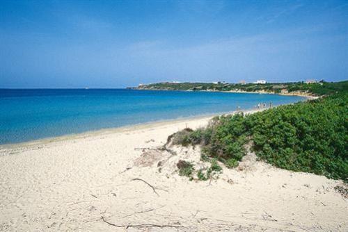 spiaggia-salina-500-0-143