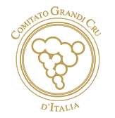 logo2-copia-3