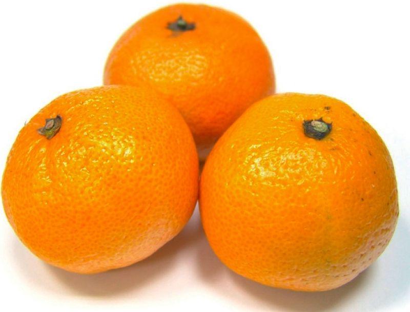 Cover Arancio dolce del Golfo di Taranto