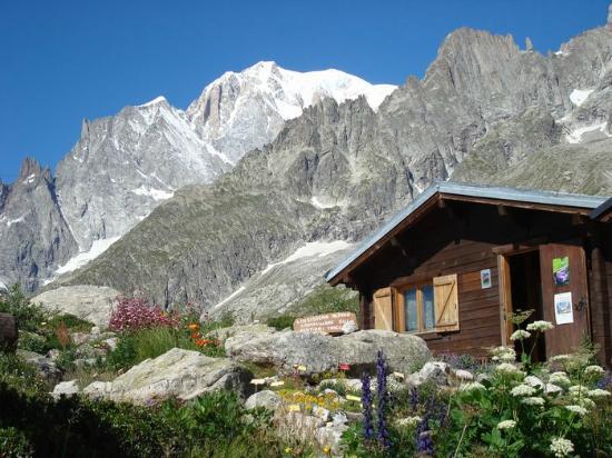 Cover Giardino Botanico Alpino Saussurea