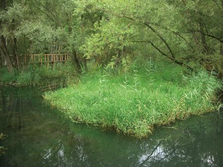 Cover Riserva Naturale Marais
