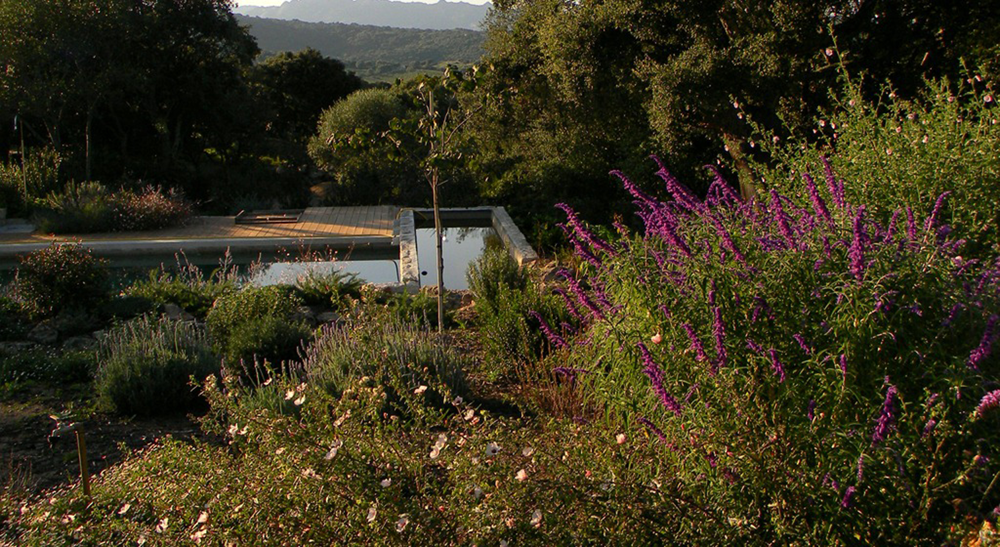 Cover Giardino dei Fontanili