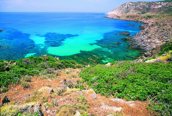 Cover Parco Nazionale dell'Asinara