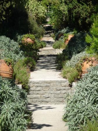 Giardini Botanici Hanbury Luoghi Italianbotanicaltrips