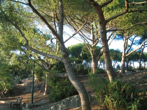 Cover Giardini Winter