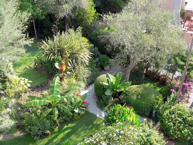 Il mio giardino tropicale luoghi italianbotanicaltrips